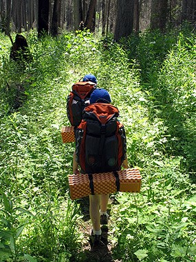 kids with backpacking gear walk down trail