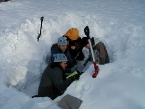 winter staff investigating snow layers