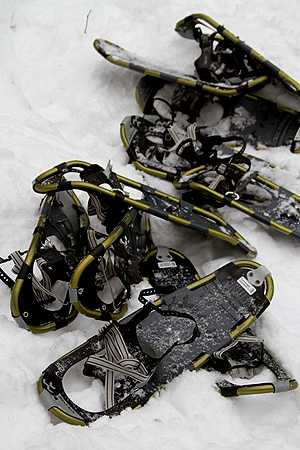 picture of snowshoes