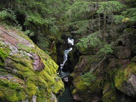 Creek cuts through mossy, rocky banks