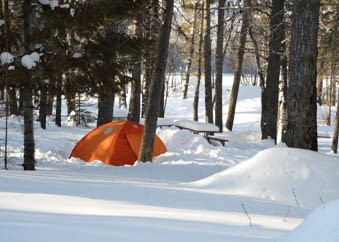 A tent in a snowy forest.