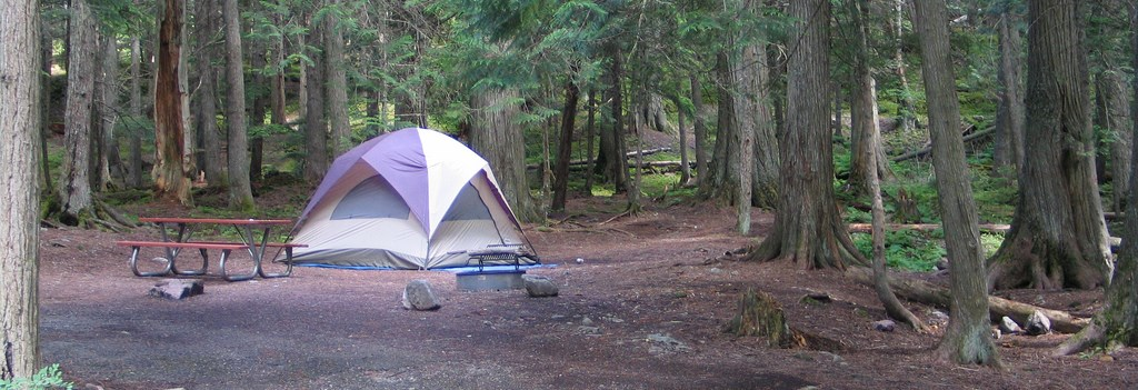 tent, picnic table, and fire ring in cleared area in forest