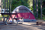 tent in wooded campsite