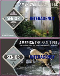image of the two kinds of senior passes - lifetime and annual