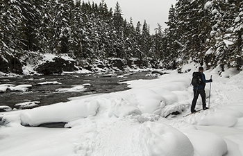 Man treks through snow along creek