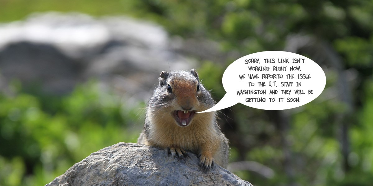 Ground Squirrel with a speech bubble explaining that this link does not work