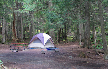 Tent, picnic table, and firering in forest campsite