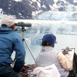 Researchers in Glacier Bay count harbor seals on icebergs.