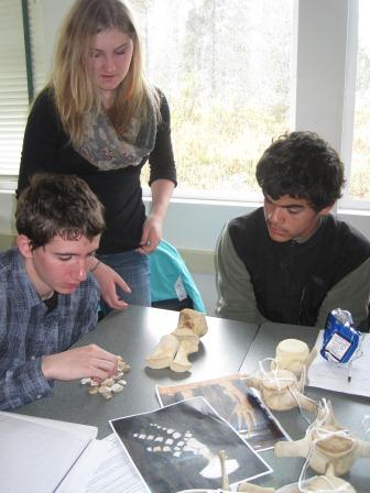 Students and Killer Whale Bones