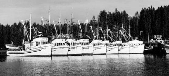 Seiners at the Bartlett Cove dock