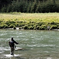 a person fishes in a river