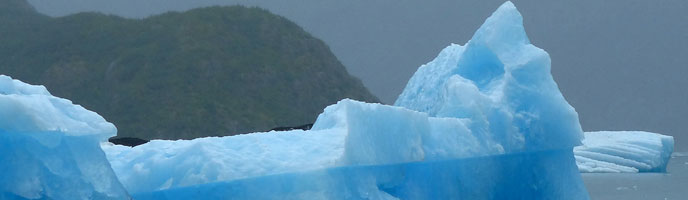 iceberg in Glacier Bay