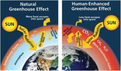 greenhouse gases trap heat within our atmosphere.