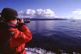 Whale researcher in Glacier Bay