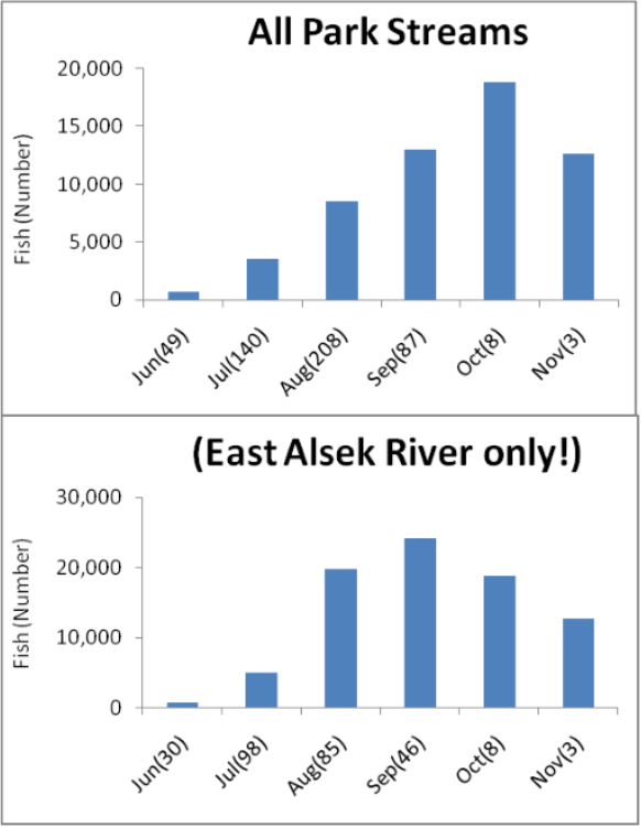 a graph showing the run times for sockeye salmon in a) all park streams and b) the East Alsek River. For all park streams the highest abundance of fish was recorded in October, and for the East Alsek River it was in September.