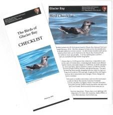 Image of Bird Checklist brochures