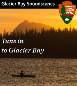 Tune-In to Glacier Bay and listen to our soundscape files