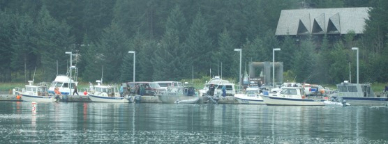Boats cluster around the busy Bartlett Cove dock