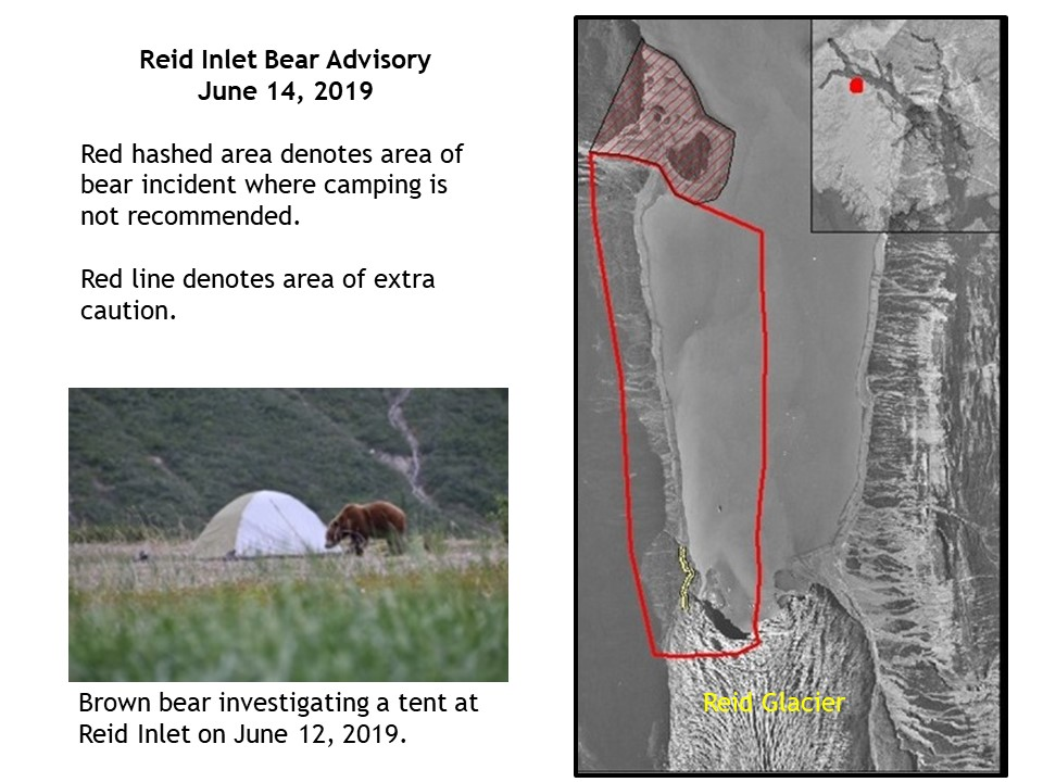 Reid Inlet Map and Brown Bear