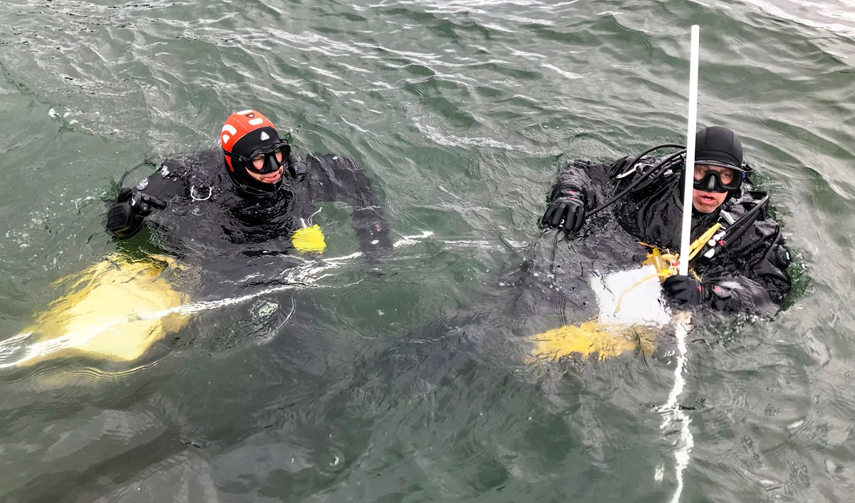 two scuba divers, one in black and one with an orange cap, float in dark green water. They hold various scientific instruments.