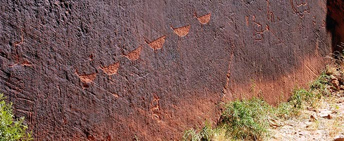 A dark rock wall with a line of animal-like petroglyphs pecked into the dark finish. Scrubby grass grows at the foot of the cliff.