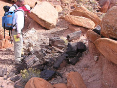 A person wearing abackpack looks at petrified wood nestled among the sandstone.