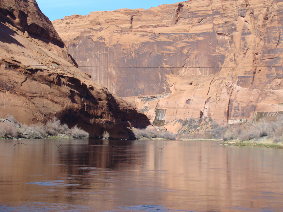 A river in a high walled sandstone canyon. Birds fly over the river.