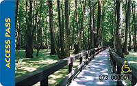 America the Beautiful Access pass. A wooden walkway in a dense forest.