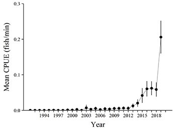 Chart indicating rapid rise of brown trout population in Colorado River
