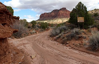 Dirt road amongst sandstone cliffs