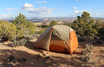 Tent among junipers with distant canyon views