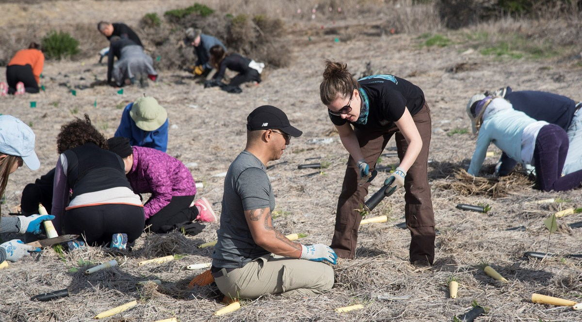 Volunteers plant seeds and one volunteer learns how from Conservancy staff.
