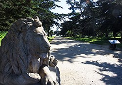 sidewalk leading to stone lions head
