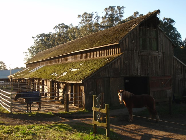 Photo of one of the horse stables  found at Rancho Corral de Tierra.