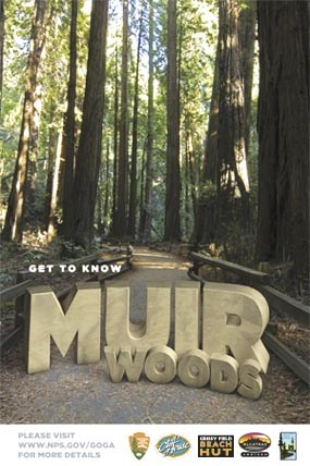 Get To Know: Muir Woods