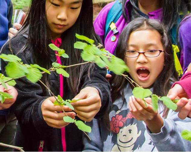 Kids observe plants