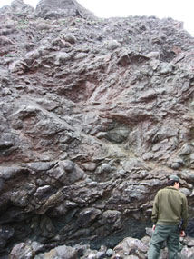 Park Ranger Mayeda examines pillow basalt on Black Sands Beach in the Marin Headlands