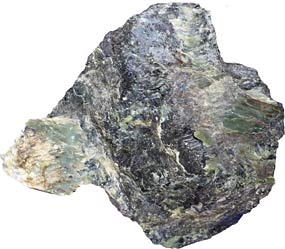 Serpentinite Faq Golden Gate National Recreation Area U