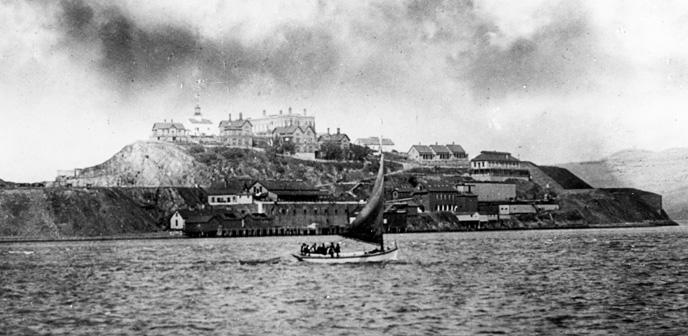 1890-Alca-688x.jpg