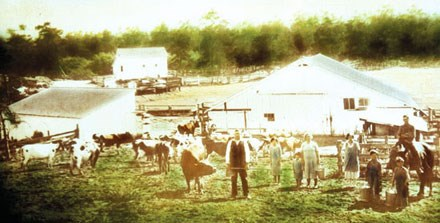farming family standing in field with cows in front of barns and paddocks