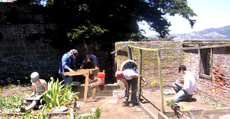 volunteers conducting archeological work in the Alcatraz gardens