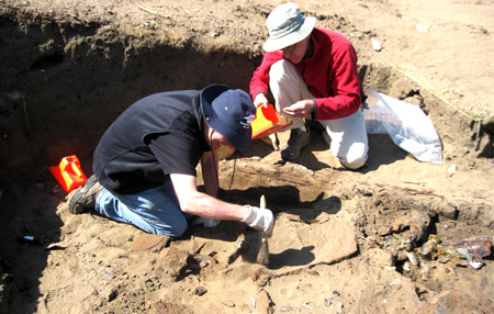 volunteers at archeology site working with brushes