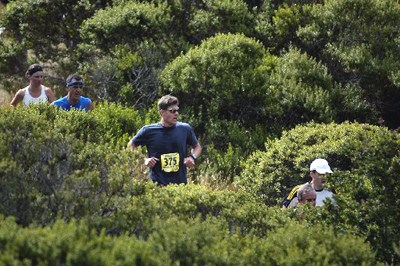 Dipsea Trail runners