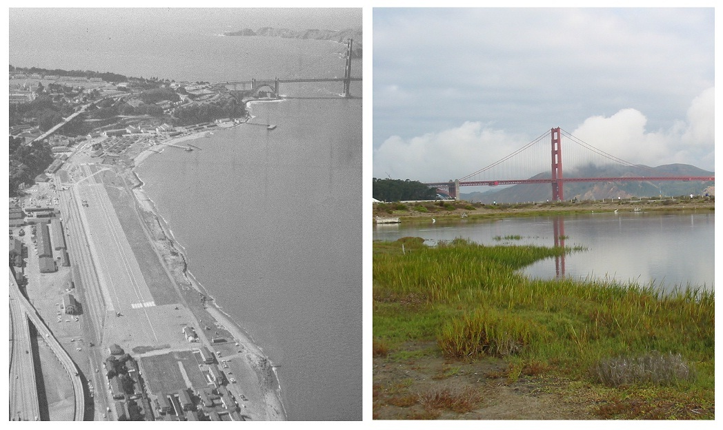 A comparison of Crissy Field 1965 and 2000.