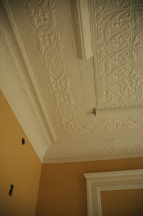 finished painted ceilings