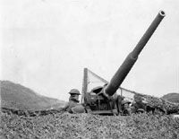 photo of an antiaircraft gun