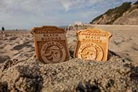 junior ranger badges in sand