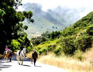 Artist rendering of equestrian use along Rodeo Valley Trail, Marin County, showing two horses with young riders, each being led by adults on foot, along a wide, tree-lined path with green hills seen in the background.
