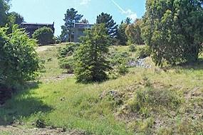 Tamalpais Property Management