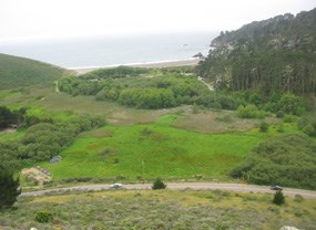Green Gulch pasture from above Hwy 1
